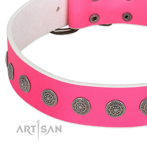 Trendy genuine leather collar with studs for your doggie