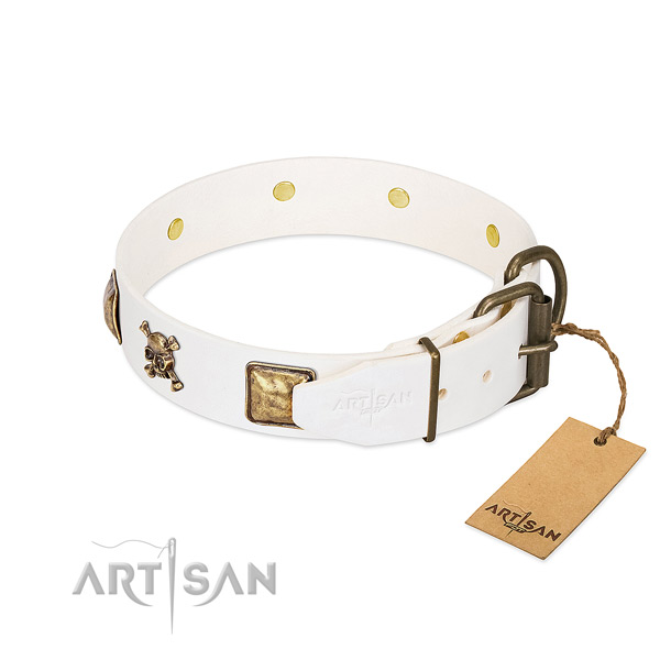 Remarkable full grain genuine leather dog collar with corrosion resistant embellishments