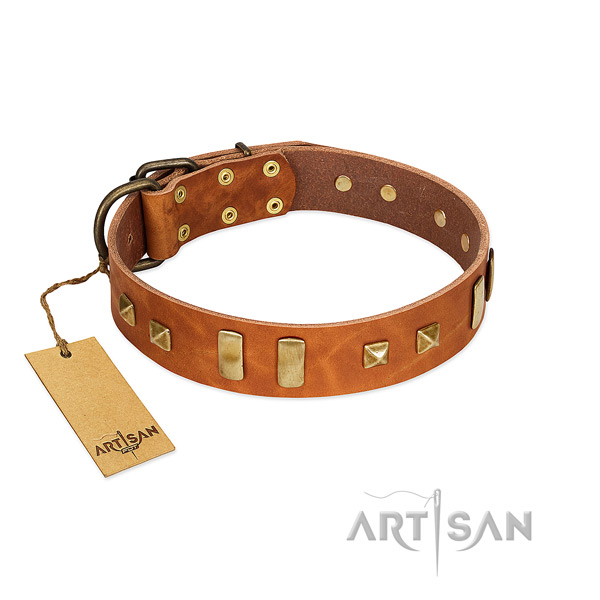 Leather dog collar with reliable D-ring
