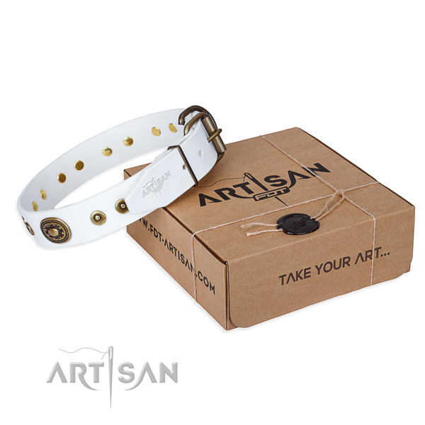 Full grain natural leather dog collar made of gentle to touch material with durable D-ring