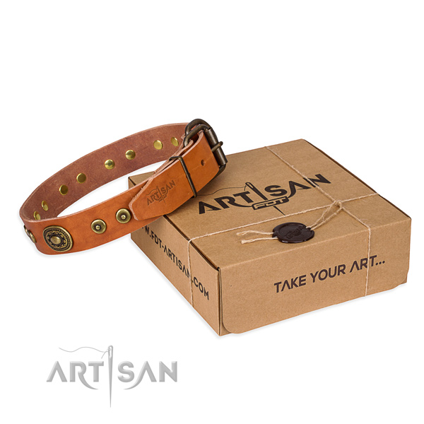 Full grain natural leather dog collar made of top rate material with rust-proof traditional buckle
