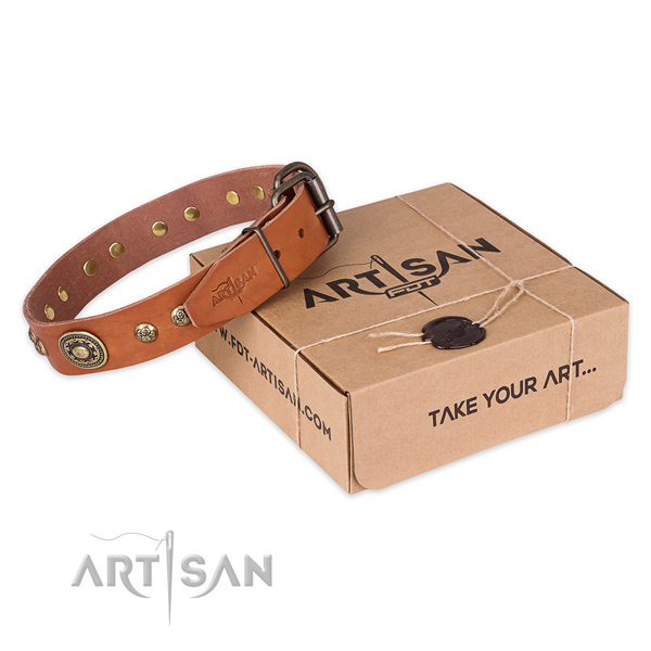 Rust-proof traditional buckle on full grain natural leather dog collar for comfy wearing