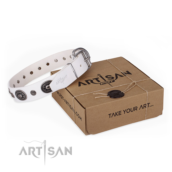 Strong full grain genuine leather dog collar created for daily walking