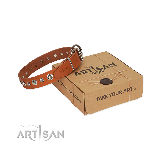 Finest quality full grain natural leather dog collar with significant decorations
