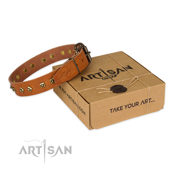 Rust-proof D-ring on full grain natural leather dog collar for walking