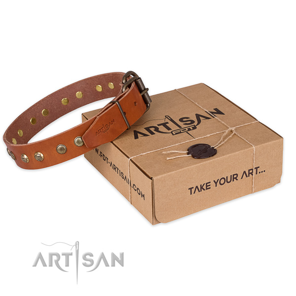 Rust resistant traditional buckle on full grain leather collar for your handsome canine
