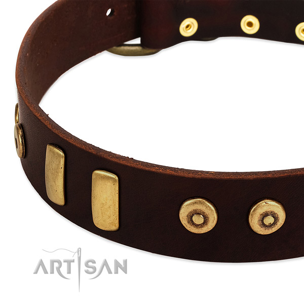 Gentle to touch full grain natural leather collar with impressive adornments for your dog
