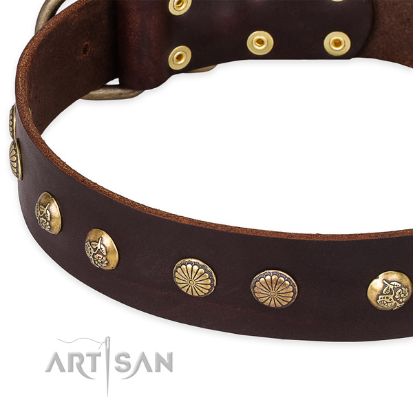 Natural genuine leather collar with strong fittings for your beautiful pet