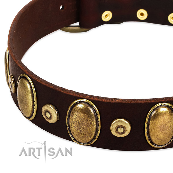 Fashionable full grain genuine leather collar for your attractive doggie
