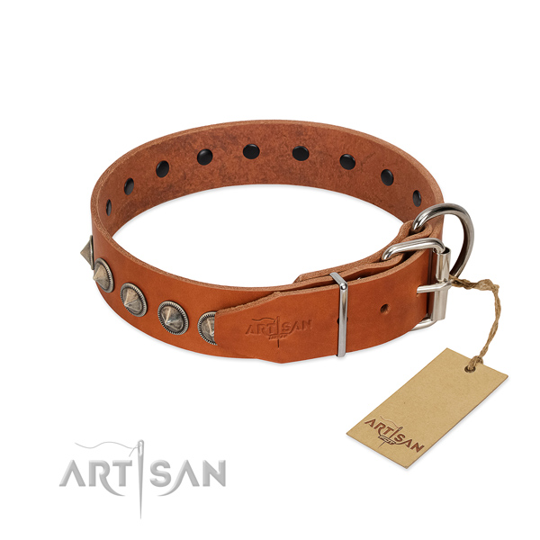 Unusual decorated full grain natural leather dog collar for stylish walking
