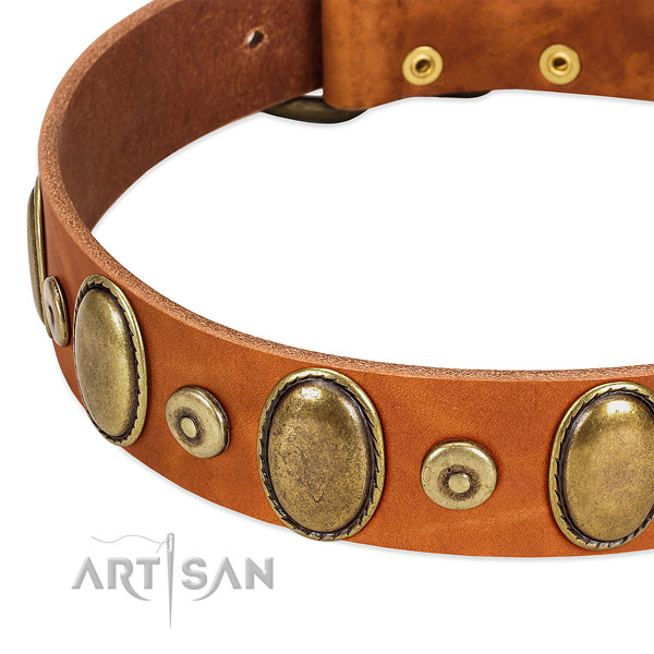 Designer full grain natural leather collar for your impressive doggie