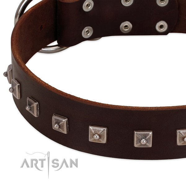Quality natural leather dog collar with trendy embellishments