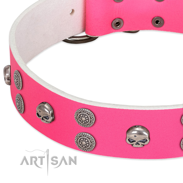 Soft to touch genuine leather dog collar with stylish studs