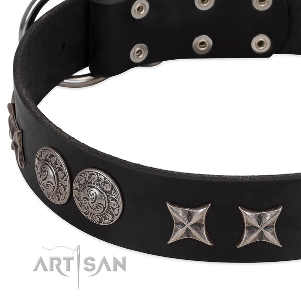 Soft to touch genuine leather dog collar with embellishments