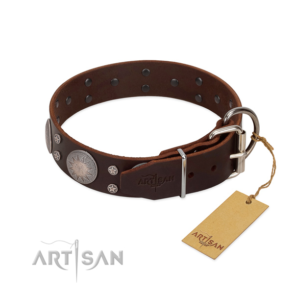 Corrosion resistant buckle on leather dog collar for everyday walking
