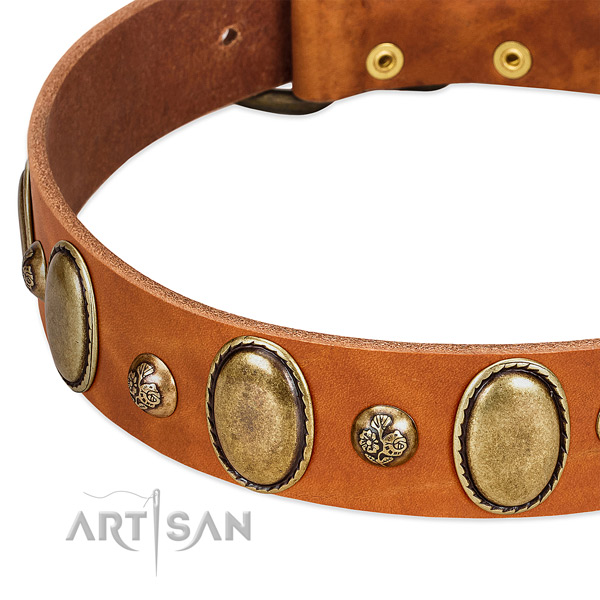 Full grain genuine leather dog collar with stylish design studs