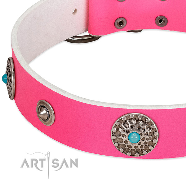 Studded collar of leather for your handsome dog