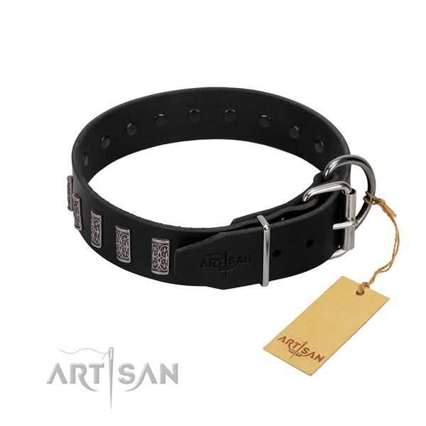 Strong traditional buckle on leather dog collar for basic training your canine