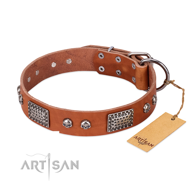 Easy wearing full grain leather dog collar for basic training your canine