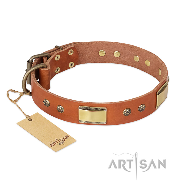 Perfect fit full grain natural leather collar for your dog