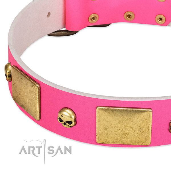 Strong full grain leather collar with corrosion resistant adornments for your pet