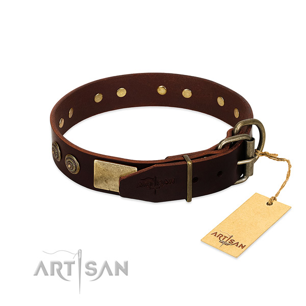 Rust resistant adornments on full grain genuine leather dog collar for your pet