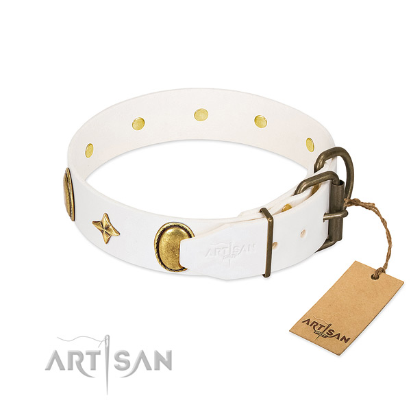 Gentle to touch full grain genuine leather dog collar with unique studs