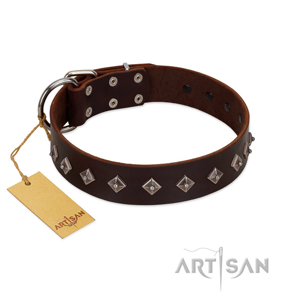 Fashionable decorations on natural leather collar for stylish walking your dog