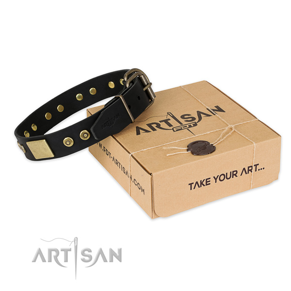 Rust resistant fittings on leather dog collar for easy wearing