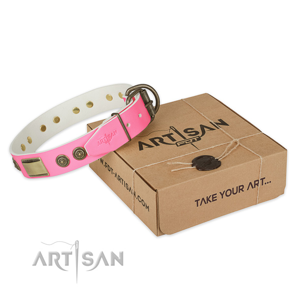 Corrosion proof embellishments on dog collar for stylish walking