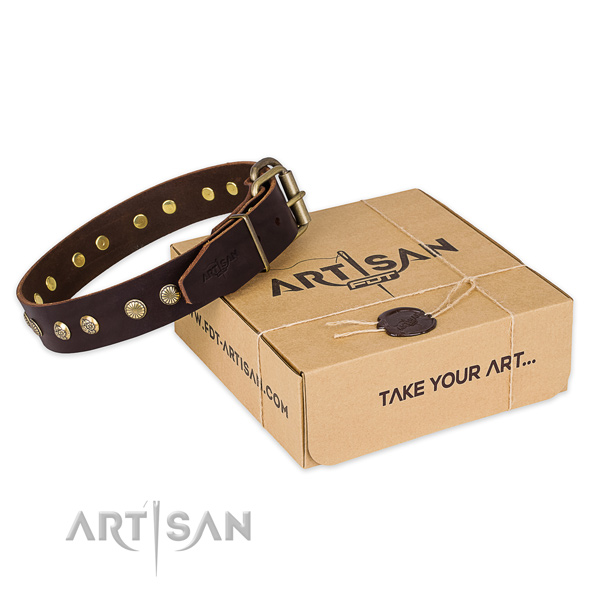Strong fittings on full grain leather collar for your impressive doggie
