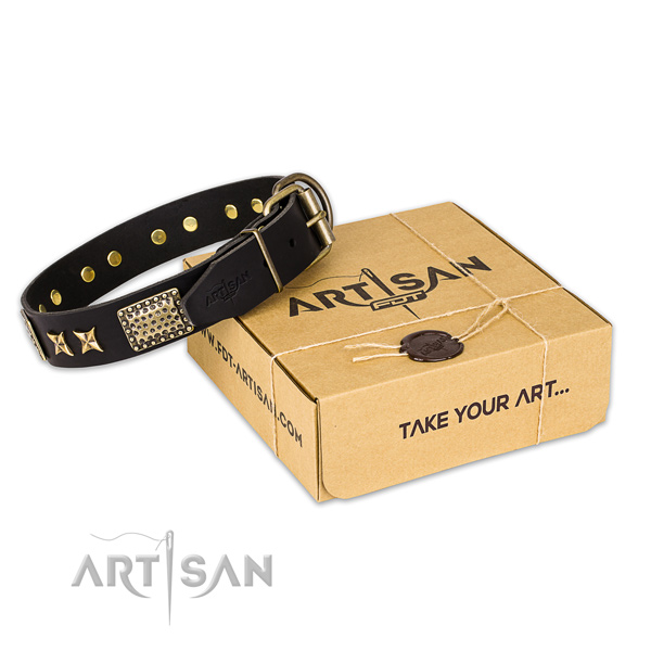 Rust resistant buckle on leather collar for your handsome pet