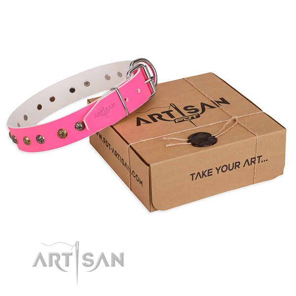 Daily use dog collar with Inimitable reliable embellishments