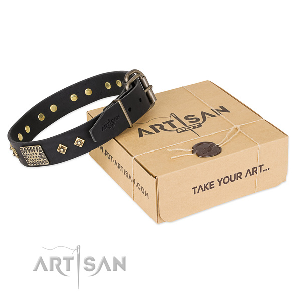 Stylish design genuine leather collar for your handsome four-legged friend