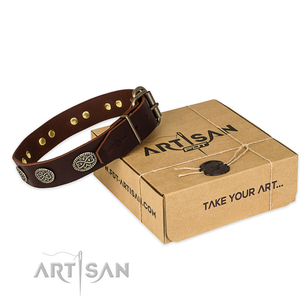 Rust resistant fittings on leather collar for your stylish four-legged friend