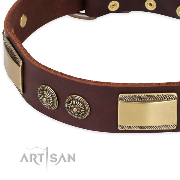 Durable embellishments on natural genuine leather dog collar for your dog
