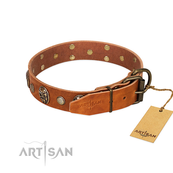 Strong buckle on genuine leather collar for walking your doggie