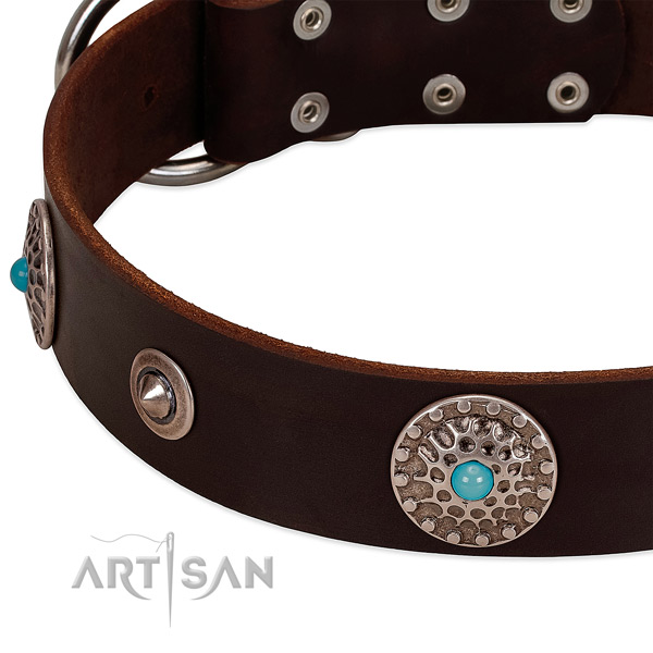 Convenient collar of genuine leather for your impressive four-legged friend