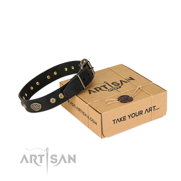 Strong adornments on full grain genuine leather dog collar for your canine