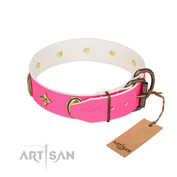 Best quality leather dog collar with impressive adornments