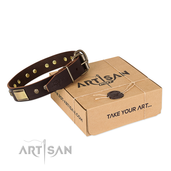 Remarkable genuine leather collar for your stylish pet