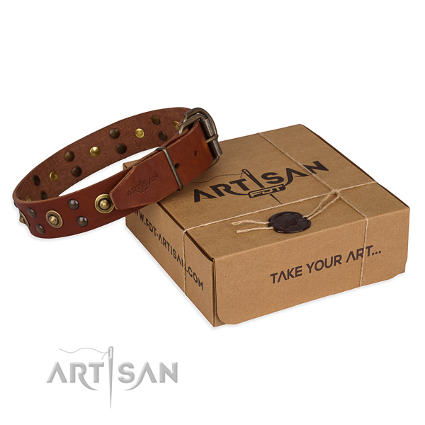 Strong buckle on full grain natural leather collar for your stylish dog