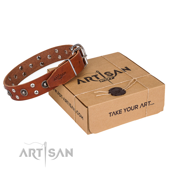 Rust-proof traditional buckle on full grain leather collar for your impressive doggie