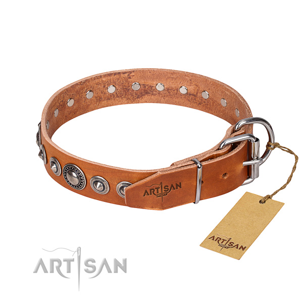 Leather dog collar made of reliable material with rust-proof adornments