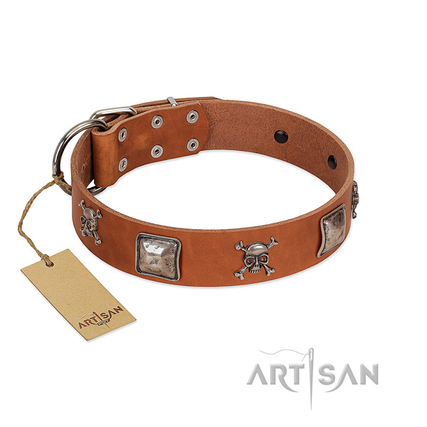 Best quality dog collar handmade for your lovely doggie