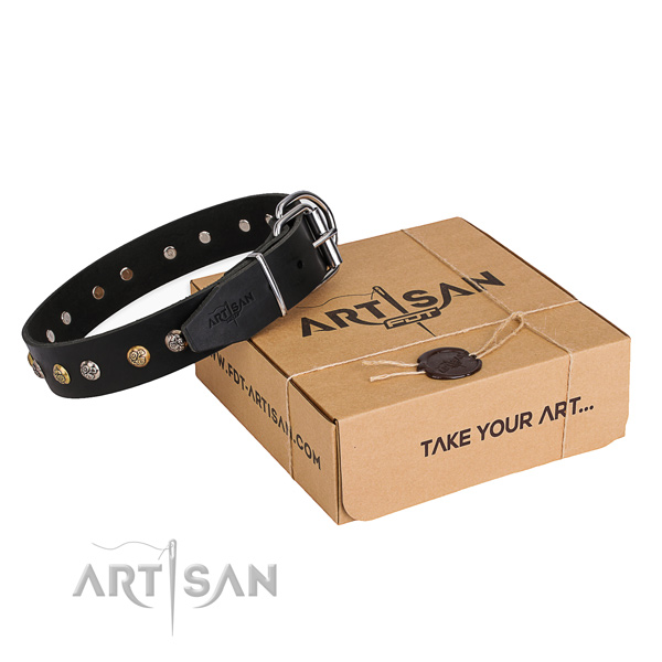 Strong full grain genuine leather dog collar handcrafted for everyday walking