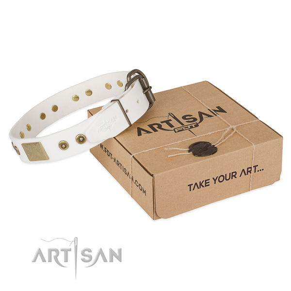 Significant natural leather collar for your stylish doggie