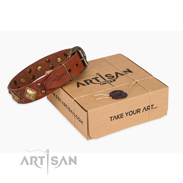 Easy wearing dog collar with Inimitable rust-proof studs