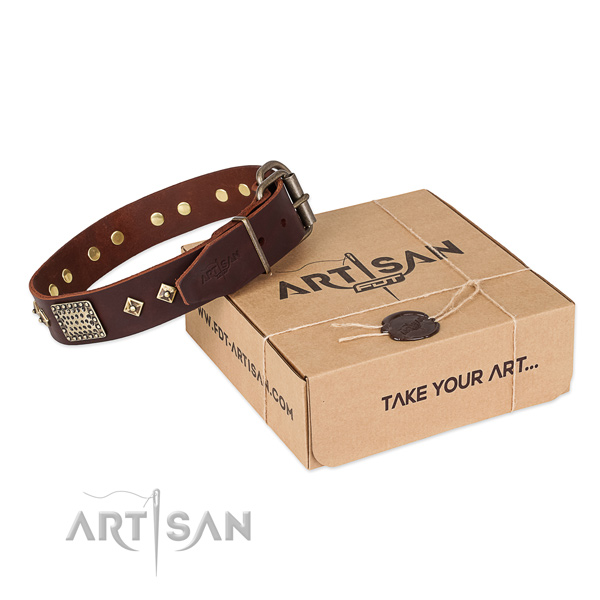 Inimitable genuine leather collar for your handsome canine