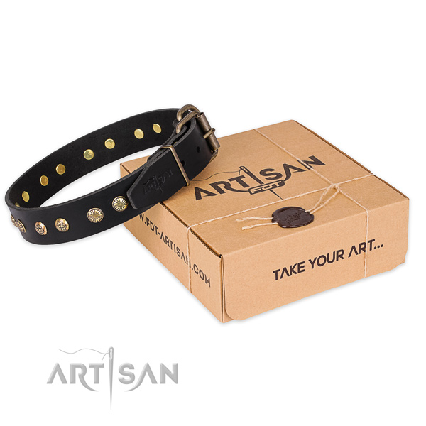 Strong fittings on genuine leather collar for your attractive four-legged friend